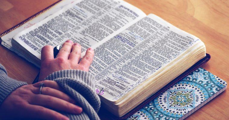 예수그리스도만이 인류의 구세주